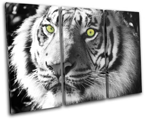 Tiger Wild Animals - 13-1396(00B)-TR32-LO